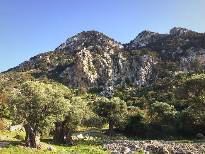 Fivefingermountains Karşiyaka Northcyprus Kyrenia Cyprus Cycling North Cyprus Cube Sightseeing Nature