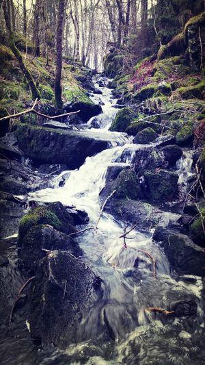 litet vattenfall nära slätthult Walking