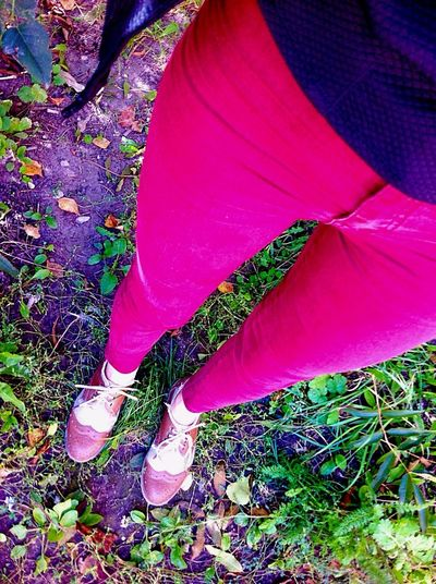 Red Jeans Footwear Shoe Human Leg Tree Trunk