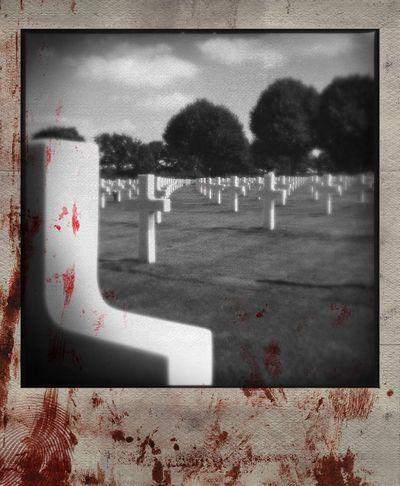 US Cemetary Margraten Polamatic EyeEm Best Shots - Black + White WW2 Memorial