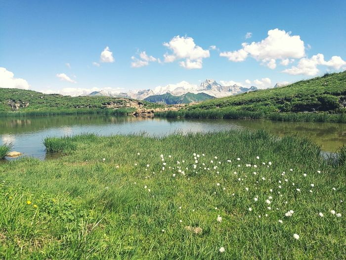 Holiday! Lake Water Grass Landscape Beauty In Nature Sky Flower Scenics Mountain Alps France -C-