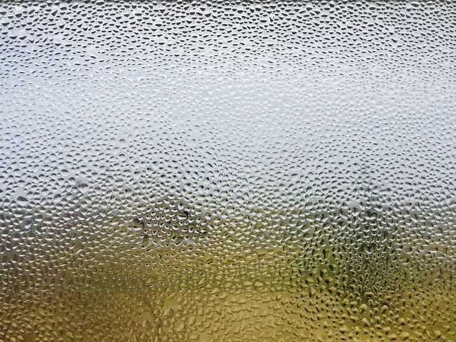 Day Close-up No People Indoors  Water Reflection Window Window View Dew Dew Drops Dewdrops_Beauty Out Of The Box