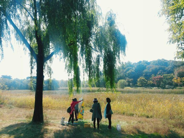 Ilsan  Enjoying Life Urban Nature Park
