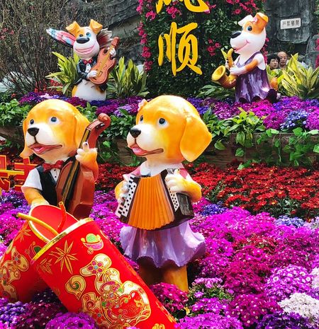 Year of the Dog. Street Decoration Chinese New Year 2018 Spring Festival In China Cultural Heritage New Beginnings Holidays Celebrations Cultural Festival Flowers Colourful Year Of The Dog Chinese New Year Animal Representation No People Multi Colored Day Outdoors
