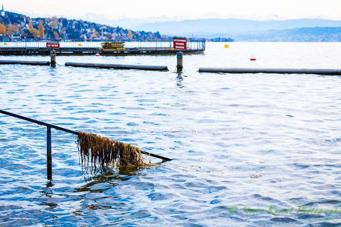 EyeEm Selects Water Mountain Day Outdoors Nature Lake Mountain Range Beauty In Nature No People Nautical Vessel Sky Zürichsee Lakezurich