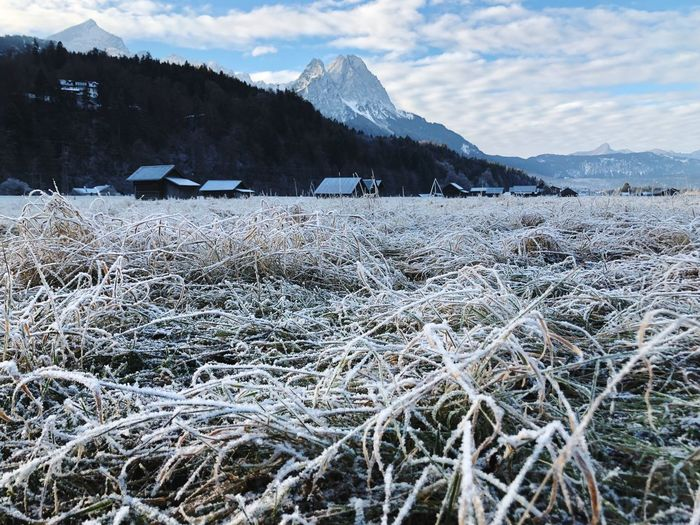 Cold Garmisch-Partenkirchen Landscape Sky Wood Freezing ❄ Freezing Cold Freeze Freezing Grass Ice Field Garmisch-partenkirchen Garmisch Gebirge Mountains Winter Axvo Cold