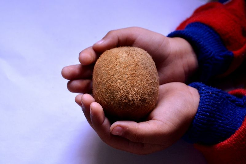 Child Human Hand Human Body Part Children Only One Person People Close-up Outdoors Day Adult Kiwi Kiwifruit Kiwi - Fruit Kiwi_photos Beautifully Organized