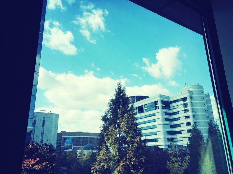 요즘 하늘은 너무 이쁘다 Blue Sky Daejeon, Korea