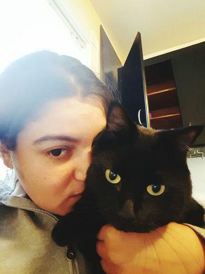 El Gato, My fathead<3 Black Cat Best Cat Ever