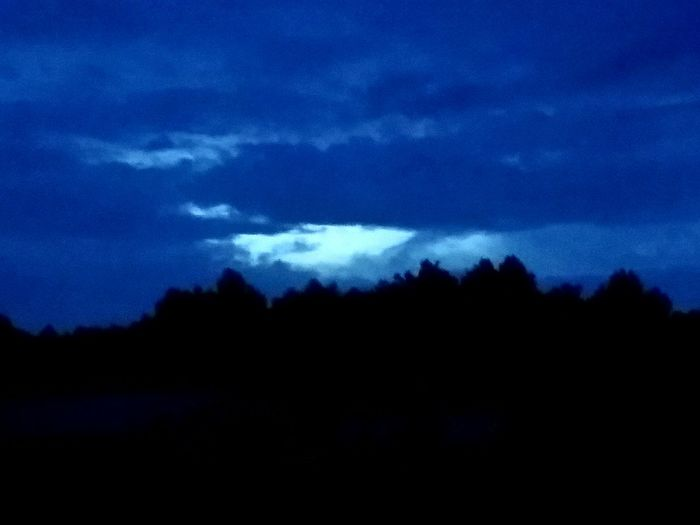 Light SHINING In Darkness! Tree Thunderstorm Astronomy Silhouette Storm Cloud Power In Nature Blue Star - Space Dark Sky Storm Dramatic Sky Sky Only Cumulonimbus Atmospheric Mood Meteorology Overcast Stratosphere Heaven