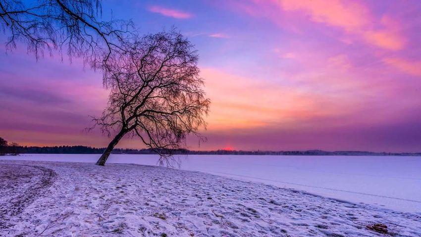 Sunset time. Sky Trees Nikon Nature Sun Nikonphotography Clouds Lake Winter Snow Beach Rocks Shore Sunset