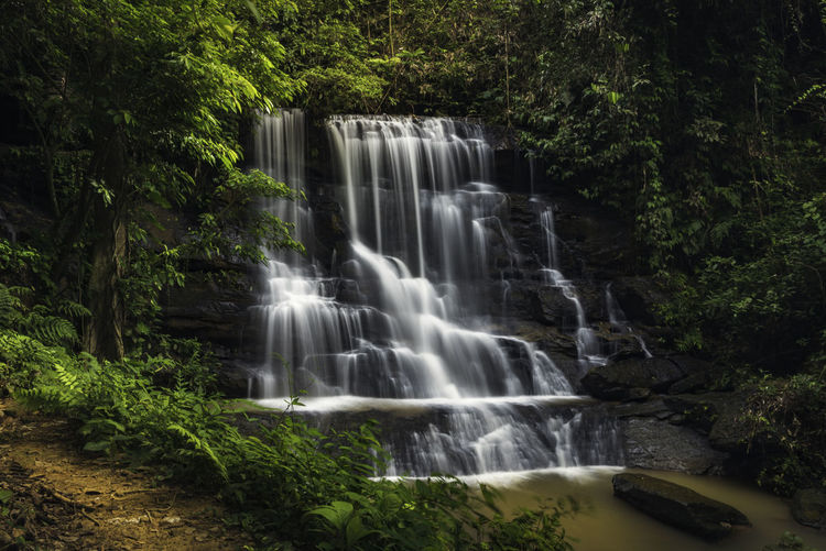 Beautiful waterfall INDONESIA Beauty In Nature Blurred Motion Environment Falling Water Flowing Flowing Water Forest Growth Land Long Exposure Motion Nature No People Non-urban Scene Outdoors Plant Power In Nature Rainforest Rock Scenics - Nature Tree Water Waterfall
