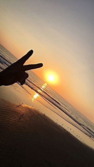 Peace,love, and happiness Sunsets Sunsetviews Oceanside Californiasunsets Beautiful Magazines Artinphotos Seagullsviews Peace