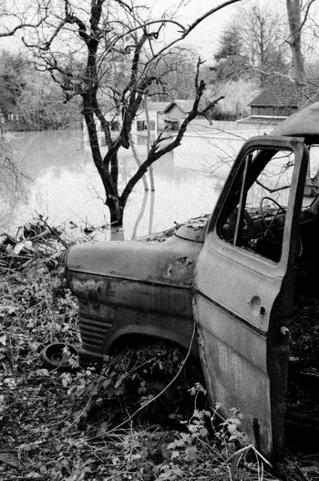 Abandoned car by bare tree