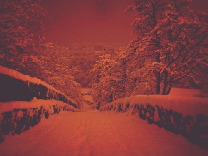 Snow Under The Snow Walking Around
