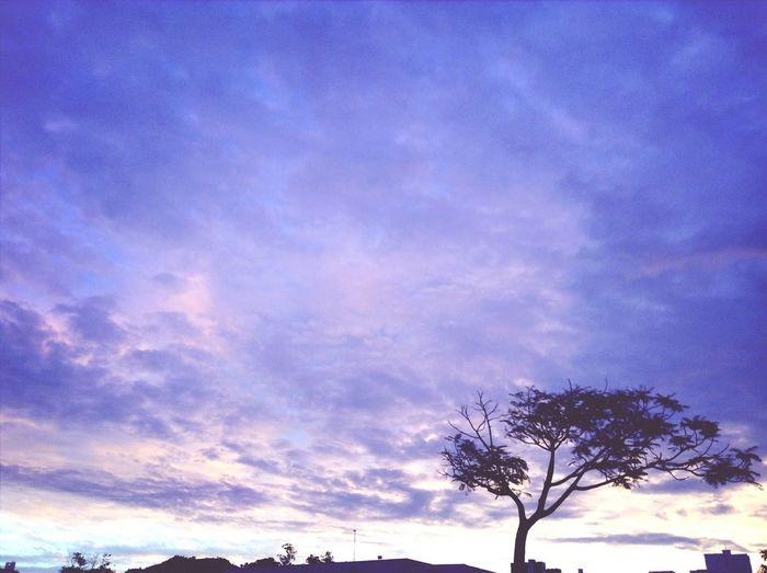 """""""procurando pela paz, então resolvi olhar para o céu..."""""""