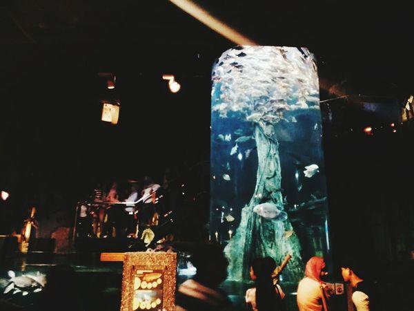 Aquarium Aquaria Klcc
