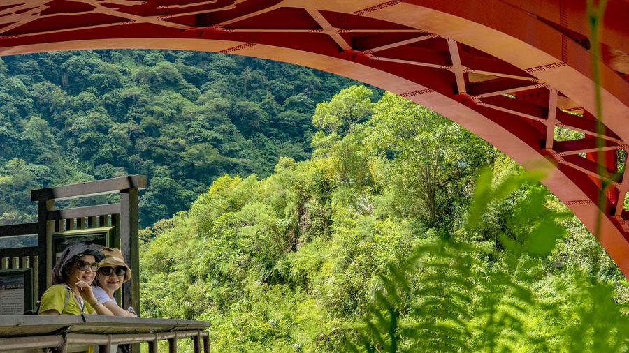 Portrait of man on bridge in forest