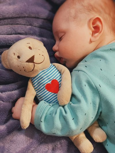 Childhood Baby Child Young Toddler  Cute Babyhood Real People Indoors  Toy Bed One Person Innocence Stuffed Toy Sleeping Close-up Furniture Softness Sleeping Baby  Baby Boy Newborn