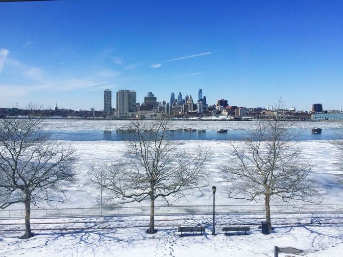 Bare trees on snow covered field in city against sky