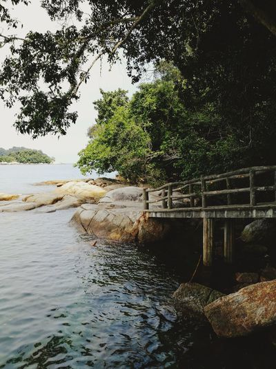 Water Tree Nature Outdoors Day Sea No People Beauty In Nature Sky Tranquility Pangkor Malaysia