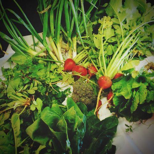 Fresh Vegetable Fruit Leaf Red Close-up Plant Green Color Food And Drink