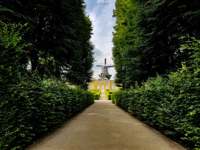 The Mill of Sanssouci Pathway Path In Nature Potsdam Potsdam Park Sanssouci Windmill Sansoucci Tree Sky Architecture Green Color Hedge Garden Path Garden Park Shrub Diminishing Perspective Path Treelined The Traveler - 2018 EyeEm Awards