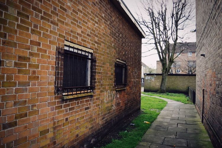 Built Structure Building Exterior Brick Wall Architecture Window No People Outdoors Day Bare Tree Tree Urban Urban Exploration Streetphotography Street Photography Morning Suburbia Eyeemphotography Eye4photography  EyeEm Gallery Taking Photos Sky