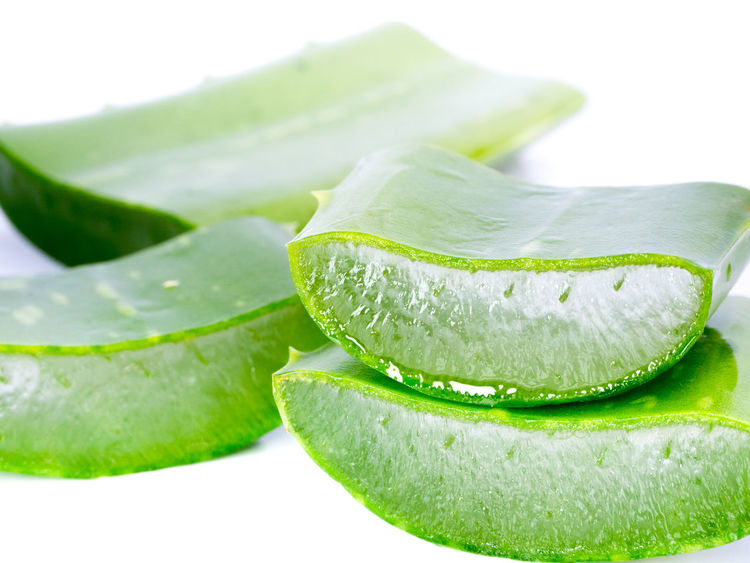 Aloe Vera sliced isolated on a white background Aloe Vera Aloe Vera Sliced Aloe Vera Sliced Isolated Cactus Care Frangipani Freshness Healthcare Nature Beauty Close-up Closeup Day Food Food And Drink Freshness Green Color Ingredient Macro Moisturizer No People Studio Shot Treatment Tropical White Background