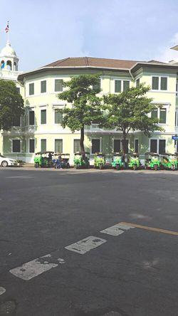 Adapted To The City City Tree Toktok Bangkok Rover  Life Lifestyles Sun