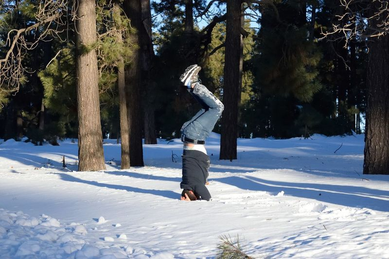 Man Doing Handstand On Snow Against Trees