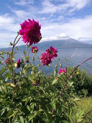 Osorno Chile Chile♥