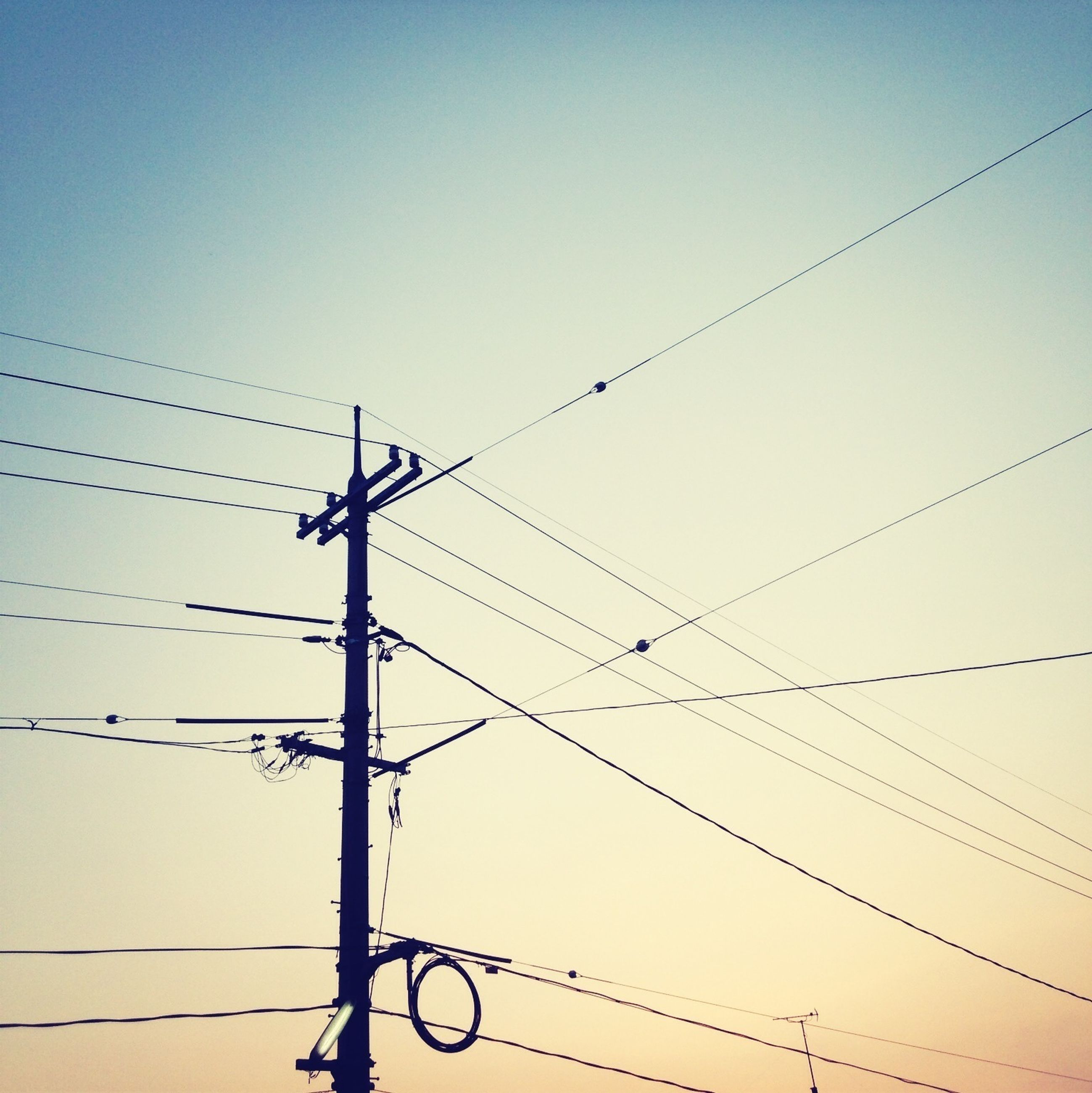 power line, low angle view, cable, bird, power supply, connection, electricity pylon, clear sky, electricity, animal themes, animals in the wild, silhouette, wildlife, power cable, perching, fuel and power generation, technology, copy space, sky