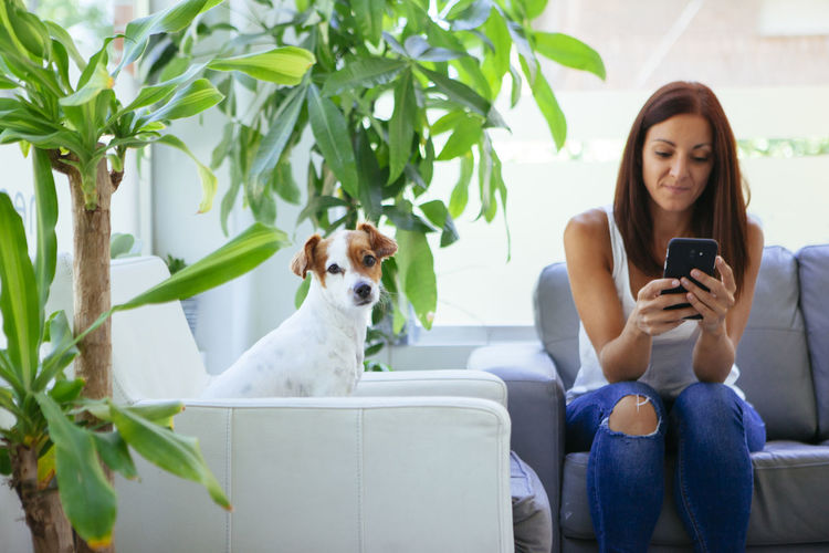 Woman using smart phone while sitting with dog on sofa