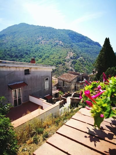 Caselleinpittari Campania High Angle View Outdoors Day Nature Beauty In Nature Italy Urban City House