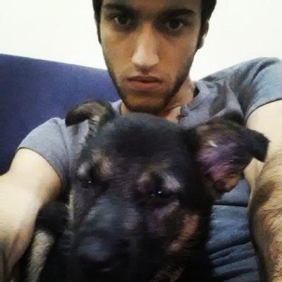 We are sooo mad son >:I GSD Germanshepherdoginstagram Germanshepherdog Mad bestfriend Mischa instamood instalike instagood puppy cute sweet smart