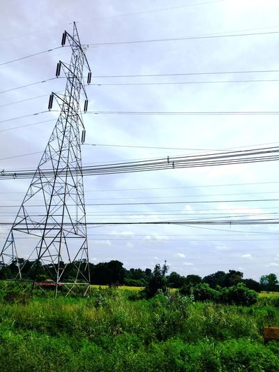 high voltage pole Bird Technology Telephone Line Electricity Pylon Electricity  Cable Rural Scene Power Line  Sky Animal Themes