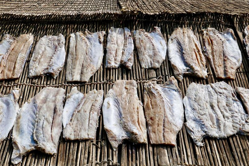 Panoramic view of fish for sale at market