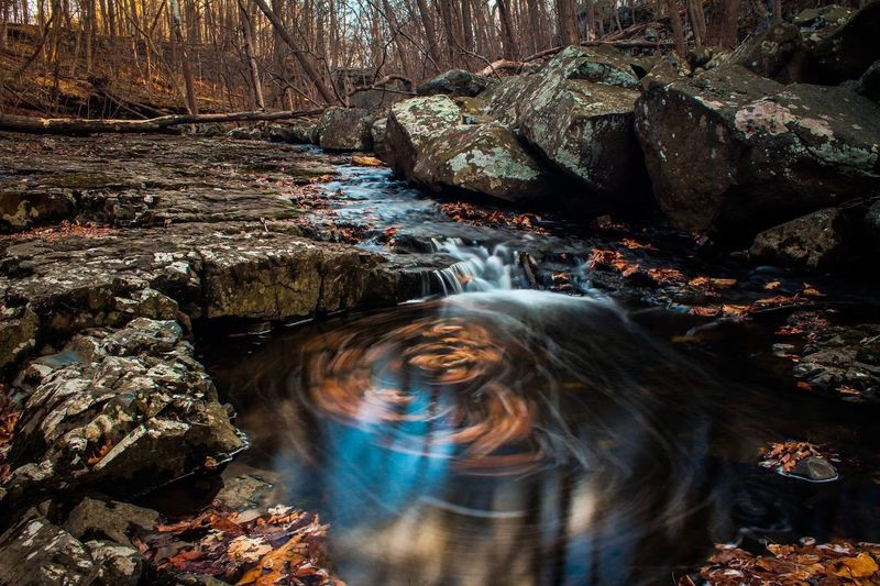 Blurred motion of stream in forest