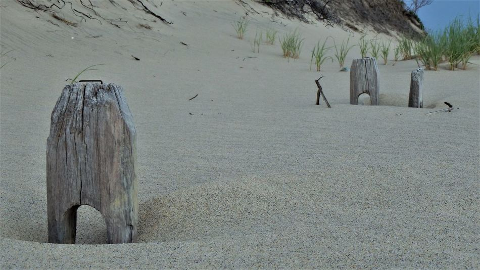 Buried Day Nature No People Outdoors Sand Sand Dune Split Rail Fence