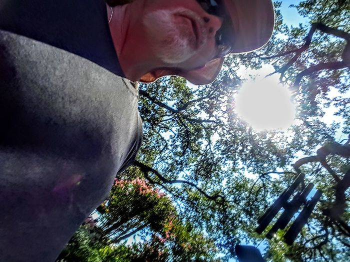Sun Selfie Self Portrait Selfie ✌ Tree Sunlight Sky Close-up Shining Sunbeam Hiker Silhouette Lens Flare Outline Light Beam The Portraitist - 2018 EyeEm Awards