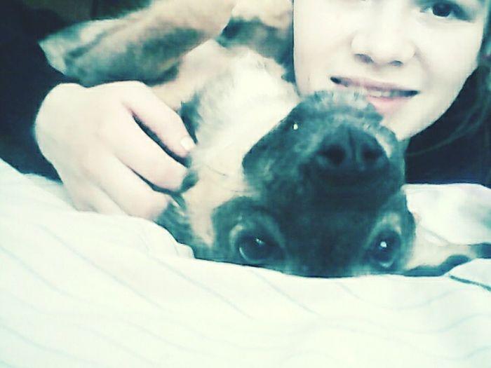 I Love My Dog Alma Parker