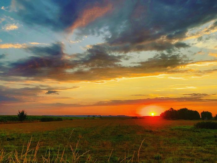 Colorful sunrise cracking the Golden sun through dark clouds under a blue sky over a farmfield and trees Sunset Nature Sky Landscape Field Grass Tranquility Dramatic Sky Plant Land Agriculture Environment Beauty In Nature No People Idyllic Orange Color Rural Scene Tranquil Scene Cloud - Sky Scenics - Nature Non-urban Scene Outdoors Romantic Sky