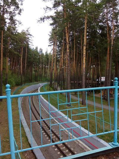 Russia Park Trees Railing Railway No People Green