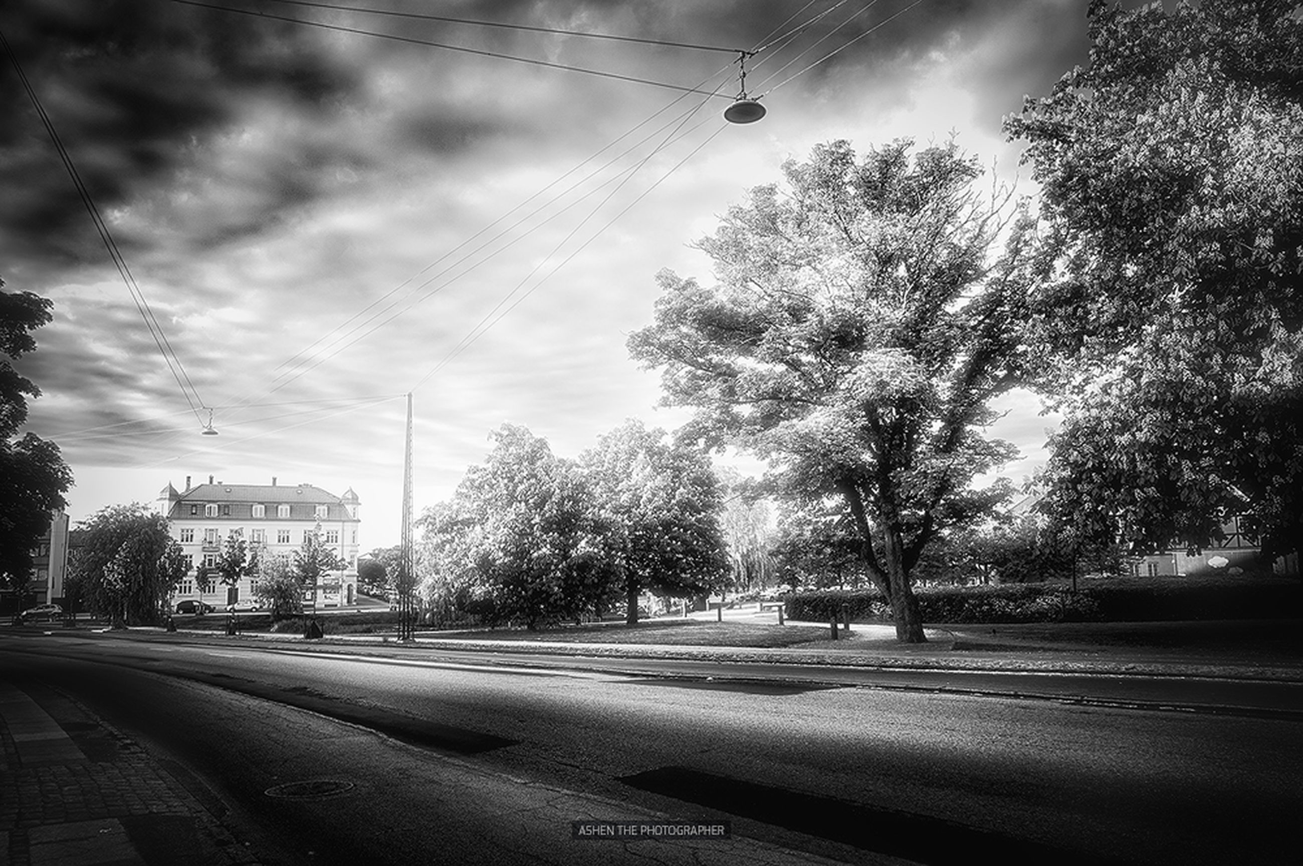 transportation, road, tree, the way forward, street, power line, road marking, sky, electricity pylon, car, diminishing perspective, land vehicle, street light, mode of transport, vanishing point, asphalt, electricity, country road, outdoors, empty road