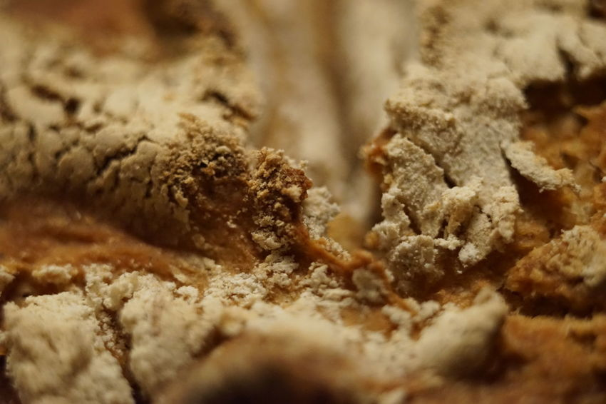 Food Bread Close-up Healthy Eating No People Fresh Baked Bread FreshBaked Food And Drink Crunchy Brot Food Stories