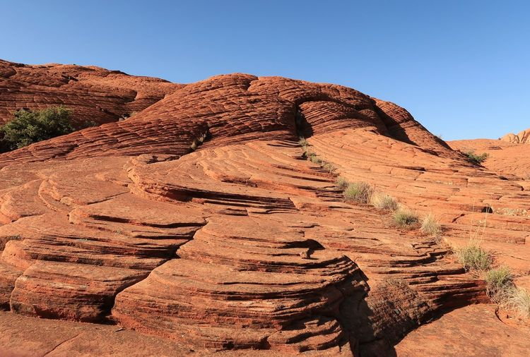 Low angle landscape of rounded red rock formations in Snow Canyon State Park in Utah Travel Destinations Orange Color Rock Formations Tourist Attraction  Utah Utah Scenery Red Hills Snow Canyon State Park Sky Nature Sunlight Clear Sky Day Scenics - Nature No People Land Desert Tranquility Landscape Solid Rock Tranquil Scene Non-urban Scene Climate Arid Climate Beauty In Nature Rock - Object Brown