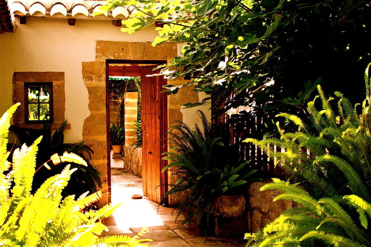 Abundance Architecture Building Building Exterior Built Structure SPAIN Decorating Decorative Door Entrance Green Green Color Kvission Living Life Mediterranean Culture Mónica Nogueira. No People Open The Door Outdoors Plant Residential Building Residential Structure Welcome The Architect - 2016 EyeEm Awards The Essence Of Summer