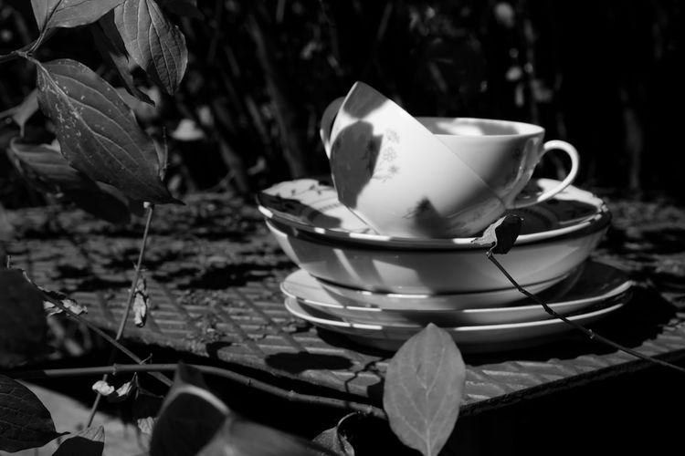 Darjeeling, darling Close-up Crockery Cup Day Drink Focus On Foreground Food And Drink Freshness Leaf Mug Nature No People Outdoors Plant Plant Part Refreshment Saucer Selective Focus Still Life Table Tea Cup