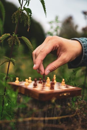 Cropped hand of person playing chess amidst plants